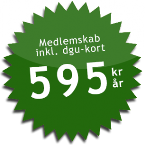 greenvalue_prisstjerne